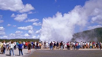 Permalink to: What is the best time to visit Yellowstone?